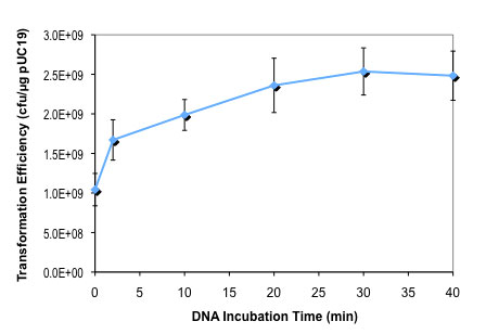 Effect of DNA incubation time on T7 Express lysY competent E.coli  transformation efficiency