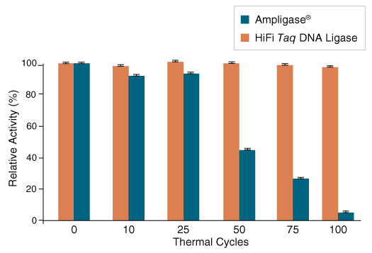 HiFi Taq DNA Ligase exhibits increased thermostability