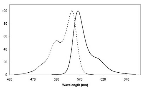 Figure 2: Excitation (dotted line) and emission spectra of CoA 547 coupled to ACP-tag in buffer at pH 7.4