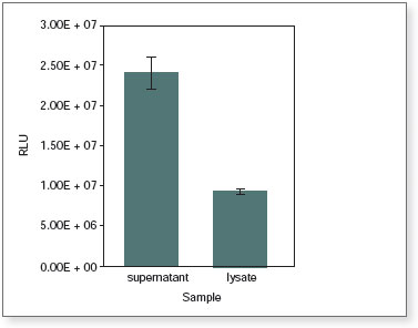 Figure 7: Activity of Cypridina Luciferase in the supernatant and lysate from a stable CLuc-expressing cell line