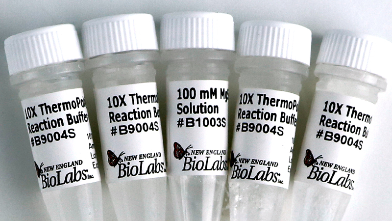ThermoPol Reaction Buffer Pack