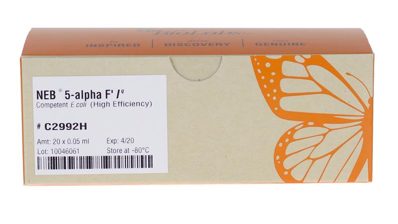 NEB 5 alpha F Iq Competent E coli High Efficiency