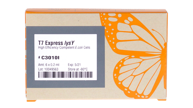 T7 Express lysY Competent E coli High Efficiency