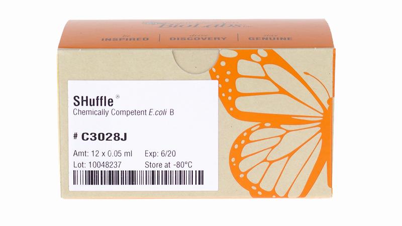 SHuffle Express Competent E coli