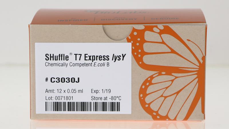 SHuffle T7 Express lysY Competent E coli