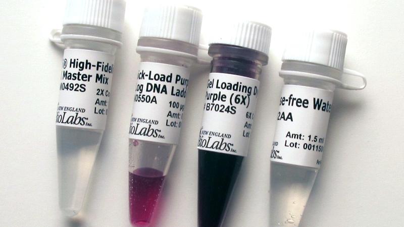 Q5 High Fidelity PCR Kit