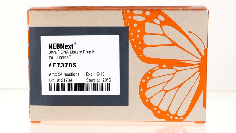 NEBNext Ultra DNA Library Prep Kit for Illumina