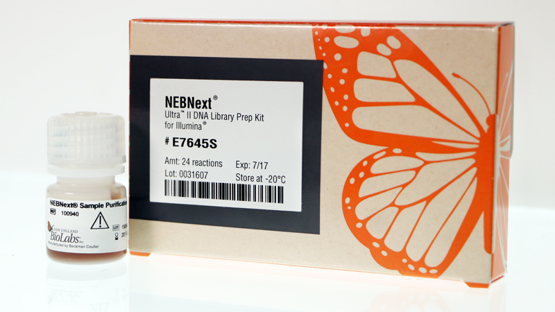 NEBNext Ultra II DNA Library Prep Kit for Illumina