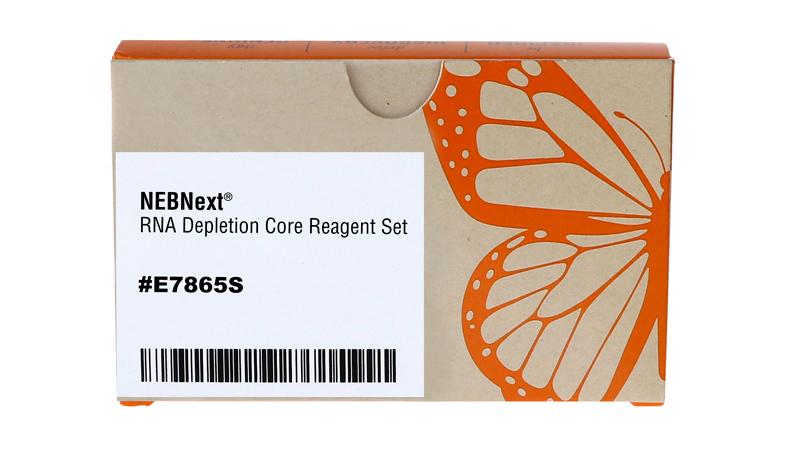 NEBNext RNA Depletion Core Reagent Set