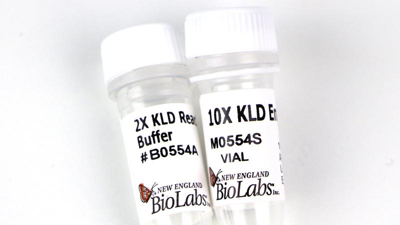 KLD Enzyme Mix