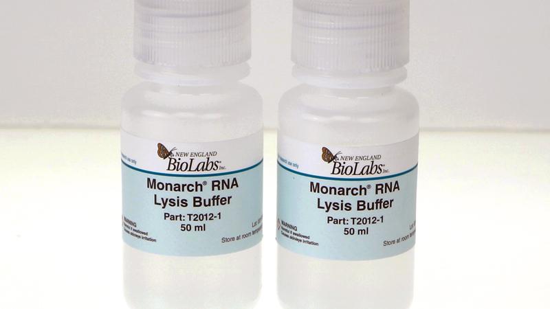 Monarch RNA Lysis Buffer