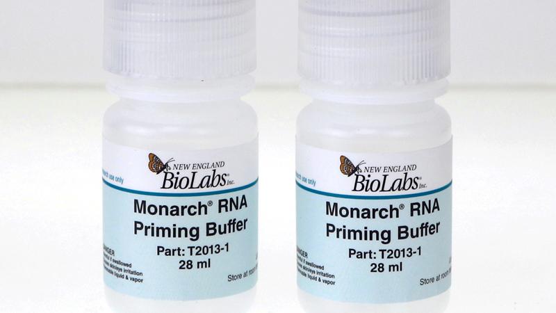 Monarch RNA Priming Buffer