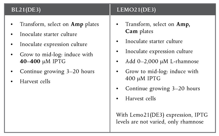 expression and purification of rgfp from Chapter ten expression and purification of membrane proteins jan kubicek, helena block, barbara maertens, anne spriestersbach, jörg labahn†,1.