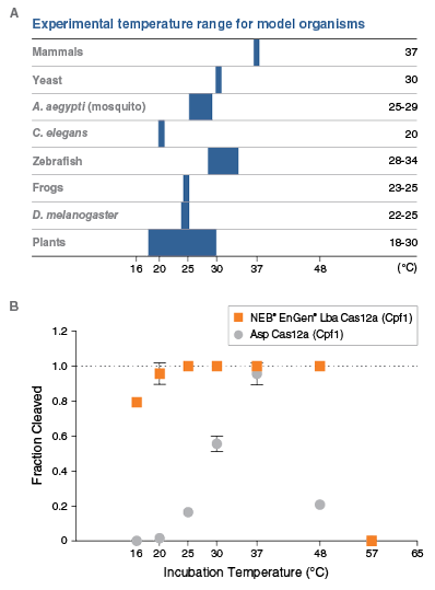 Cas12a Temperature