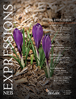 Expressions_Issue_I_2020