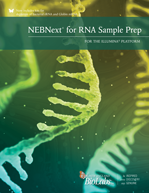 NEBNext_RNA_Illumina_Brochure_thumb