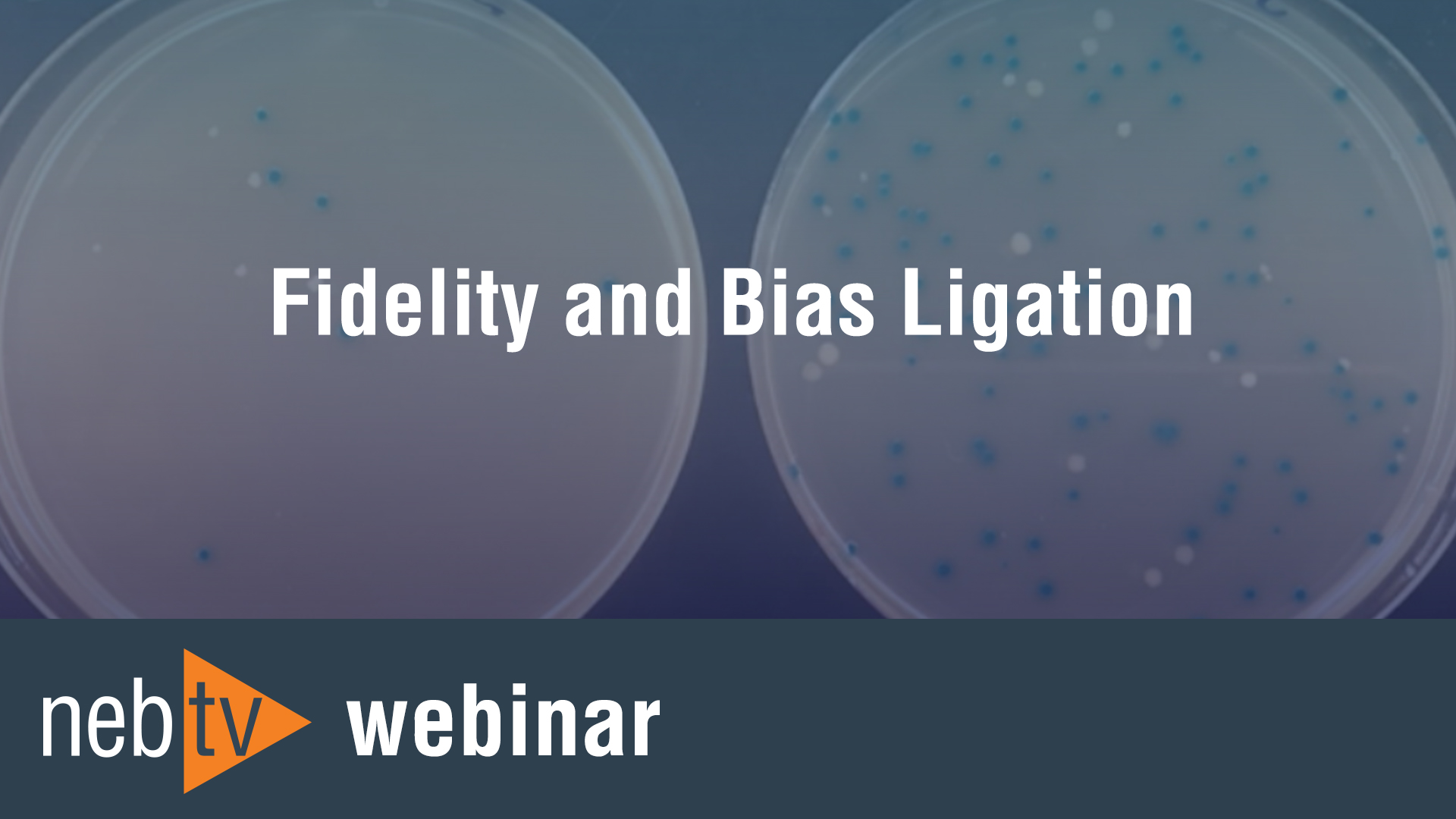 Fidelity-and-Bias-ligation