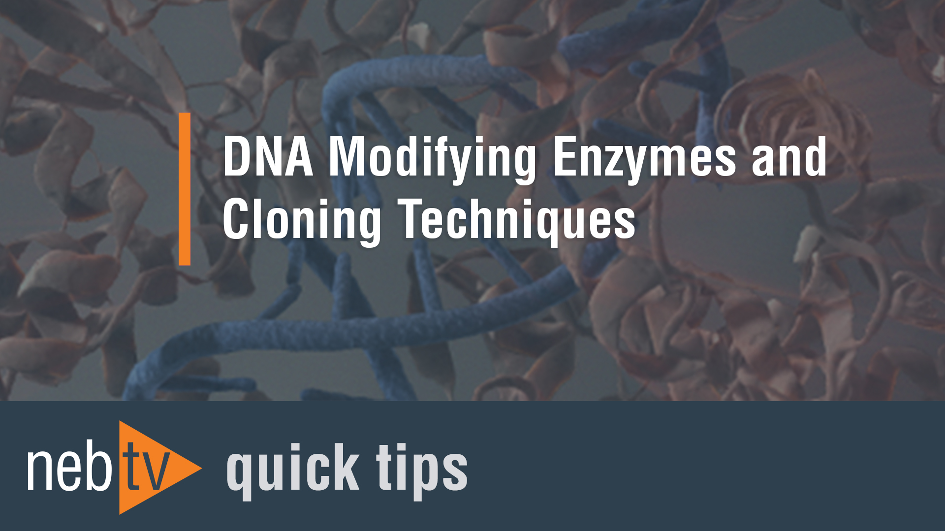 NEBTV_DNA-Modifying-Enzymes-and-Cloning-Techniques_1920
