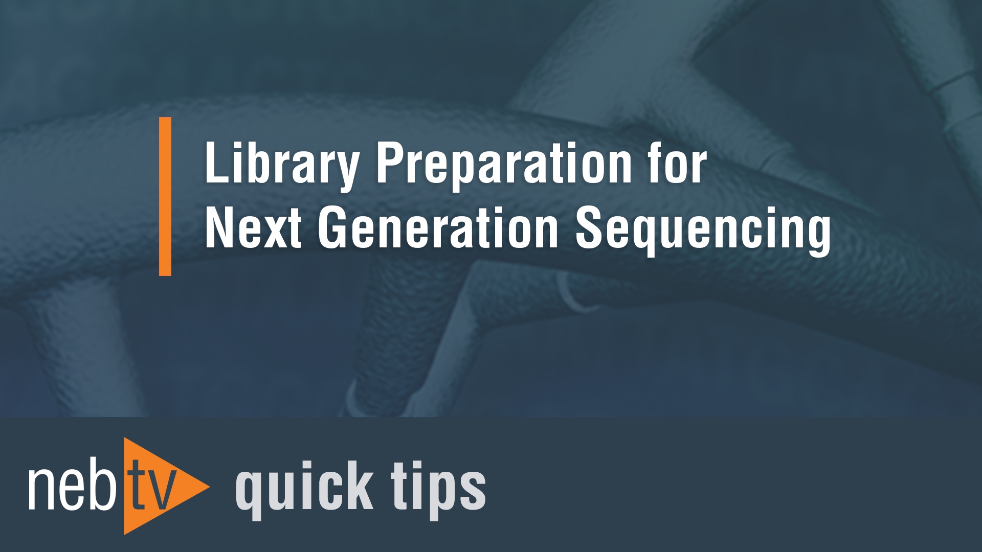 NEBTV_Library-Preparation-for-Next-Generation-Sequencing_1920