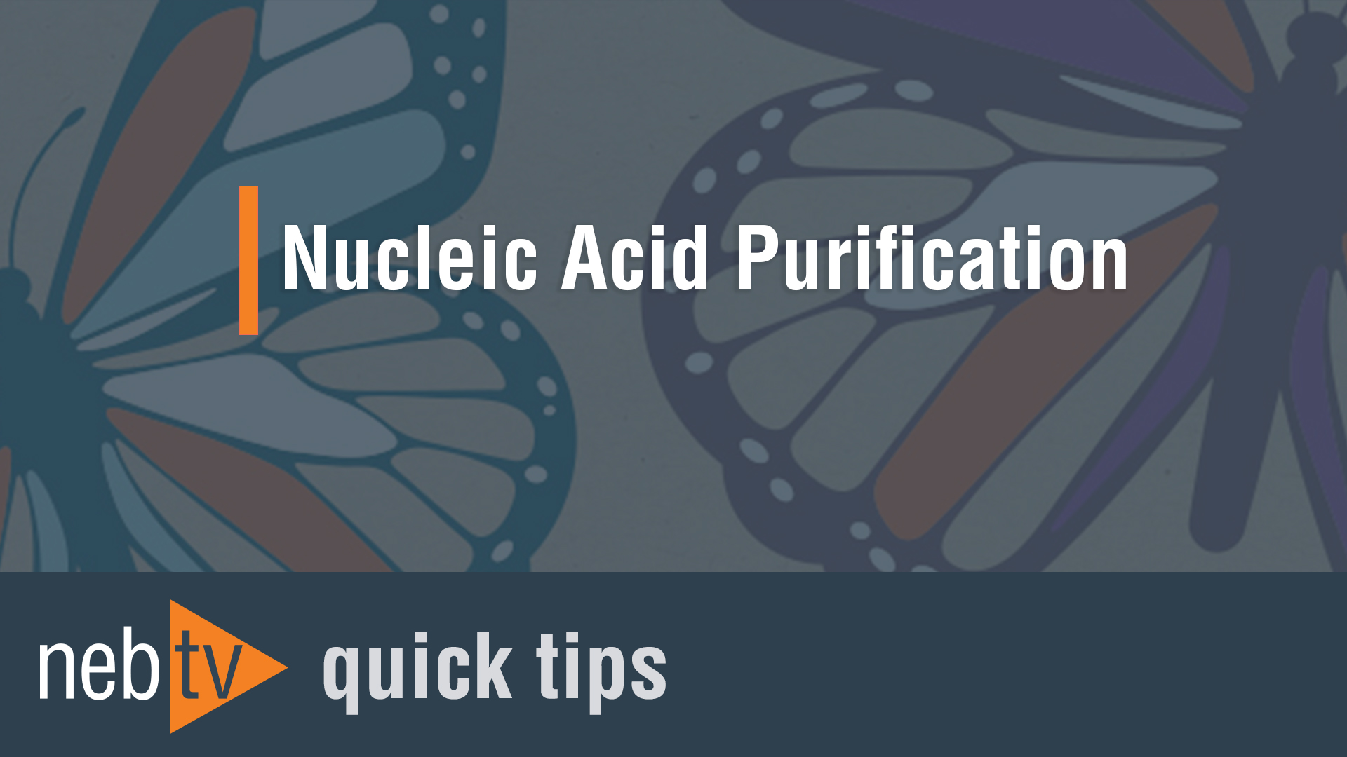 NEBTV_Nucleic-Acid-Purificatio_1920