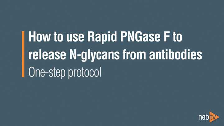 PNGase_OneStep_720
