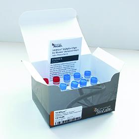 NEBNext Multiplex Oligos for Illumina Methylated Adaptor Index Primers Set 1