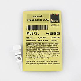 Antarctic Thermolabile UDG