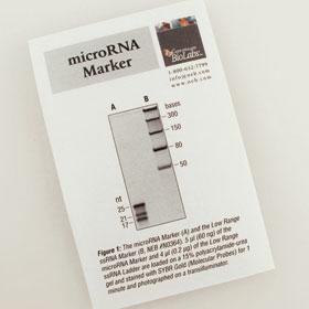 microRNA Marker