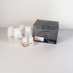 Magnetic mRNA Isolation Kit